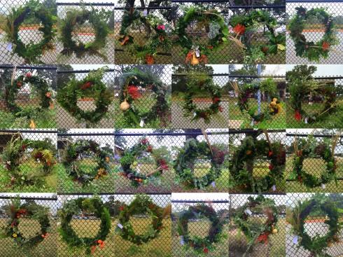 Titan Garden 2014
